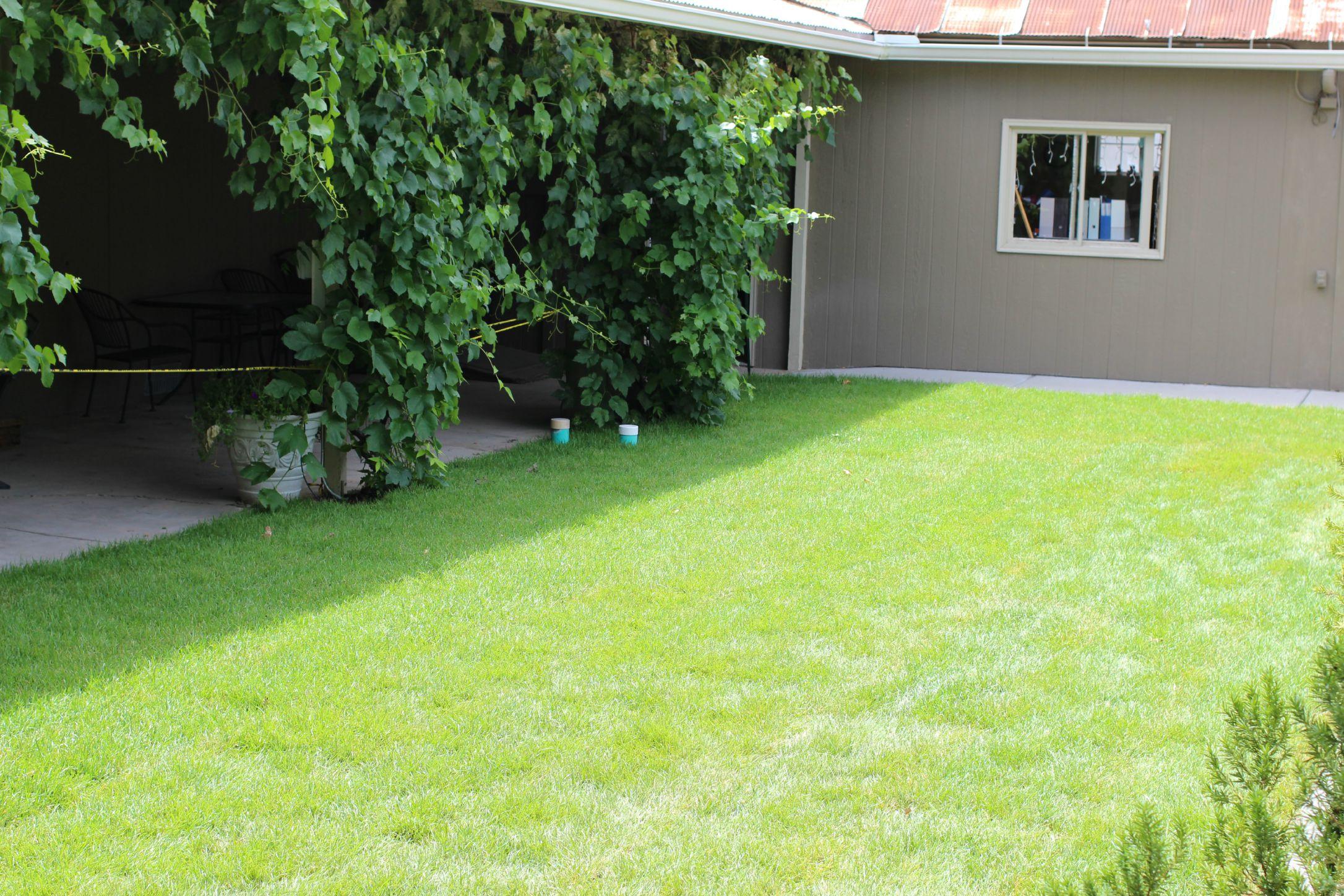 -Palisade Branch landscaping (2) 7-24-15