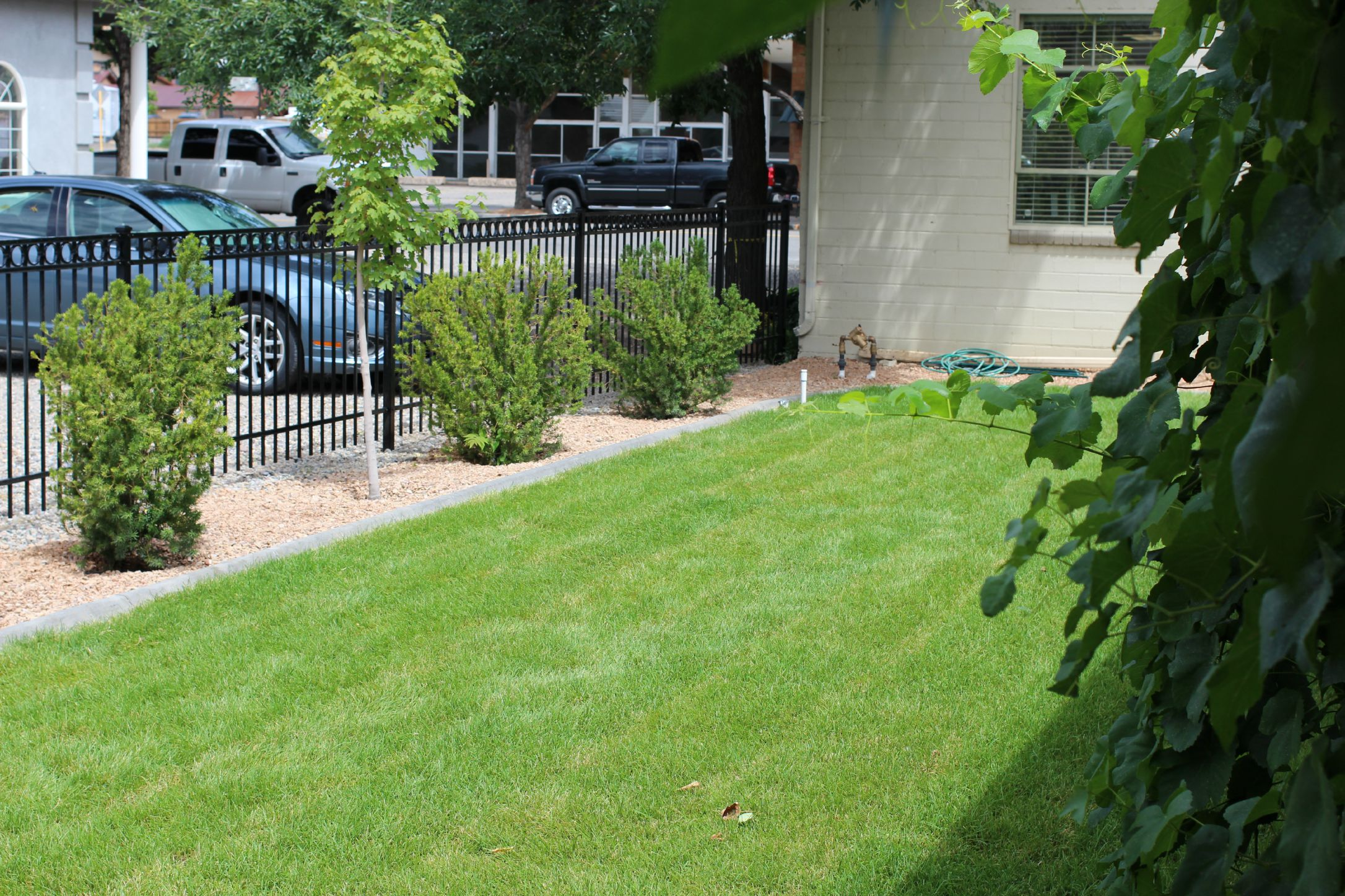 -Palisade Branch landscaping (3) 7-24-15