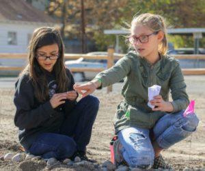 children planting seeds