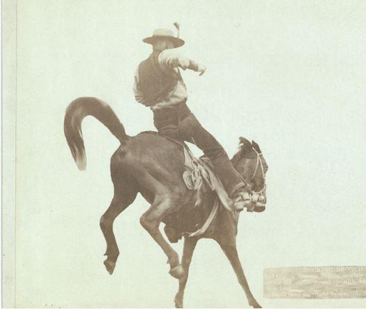 Cowboy on a Bucking Horse.