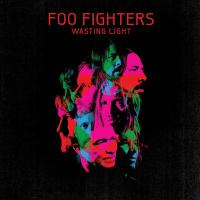 Wasting Light book cover