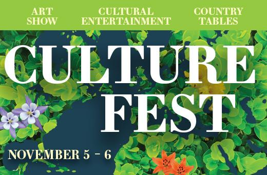 Culture Fest Banner